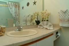 Upgraded Master Bathroom, tiled vanity top, new tiled shower over tub, glass door enclosure