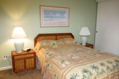 Master Bedroom - queen size bed - new carpeting
