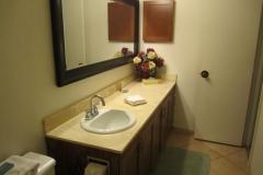 Master bathroom, new cabinets, sink, tiled shower