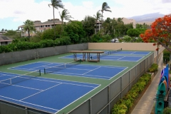 Four tennis courts