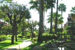 Lush greenery nestled amongst condos, ponds, and waterfalls